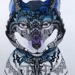 Loup de dentelle