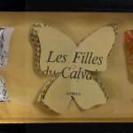 Cabinet de curiosité papillons