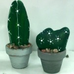 Galets cactus